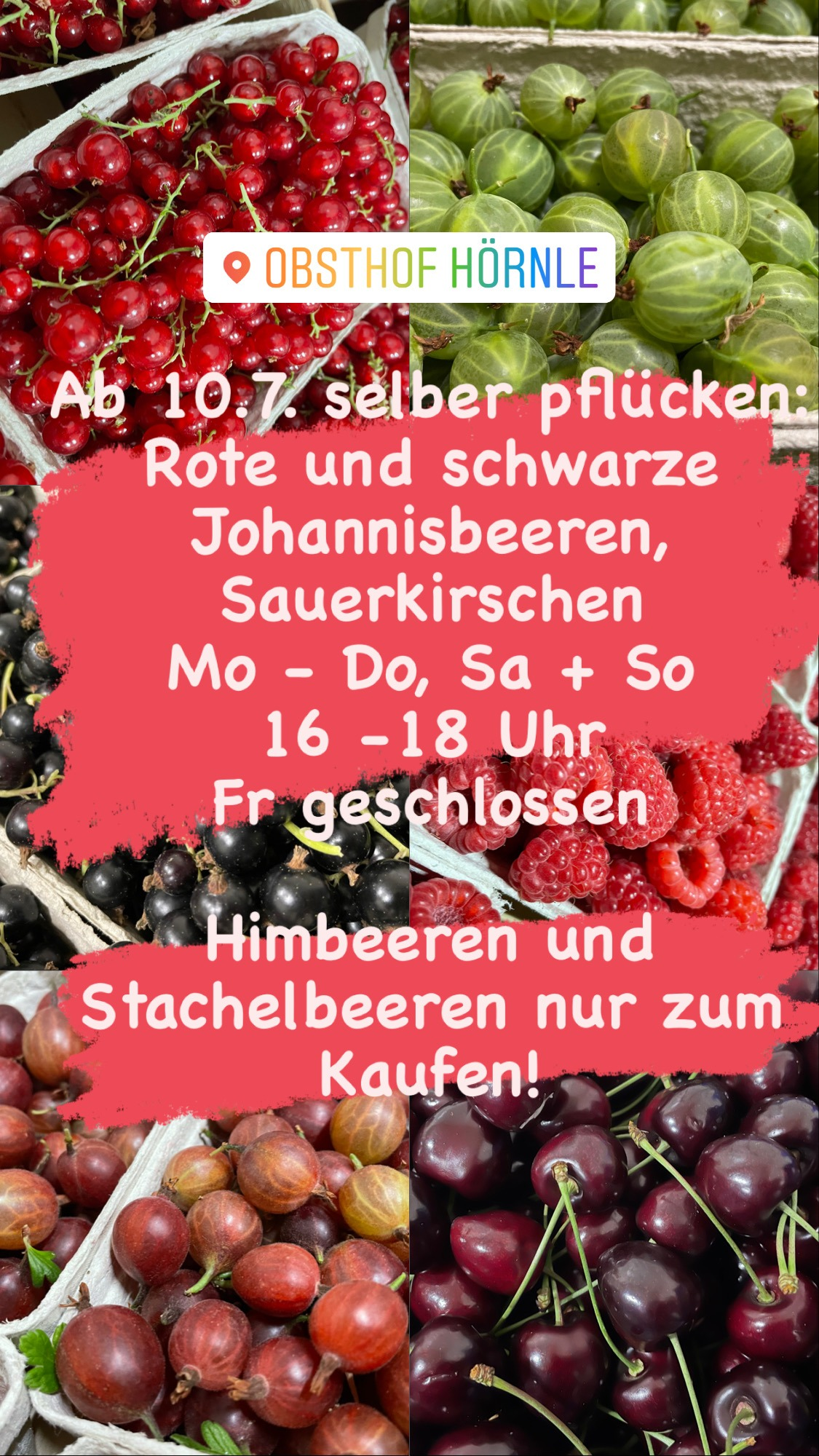 Read more about the article Selbstpflücke Info 8.7.