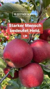 Apfelheld5