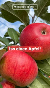 Apfelheld7