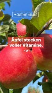 Apfelheld1