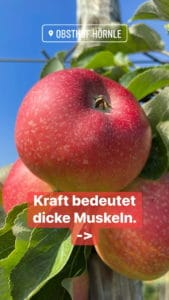 Apfelheld3