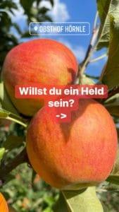 Apfelheld6