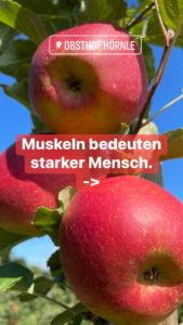 Apfelheld4